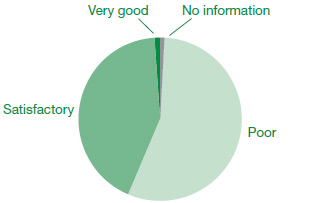 Pie chart showing the accessibility of council websites